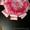 Банты для выписки из роддома - Изображение #8, Объявление #1250024
