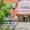 Стильный и современный Горный курорт Алма-тау #1509879
