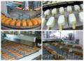Производственные линии в Шымкенте - Изображение #2, Объявление #1288496