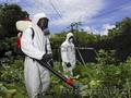 Юг Дезинфекция - уничтожение вредных насекомых и грызунов - Изображение #2, Объявление #1507349
