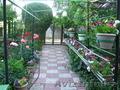 Продам дом в тихом уютном уголке - Изображение #2, Объявление #1570234