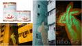Люминесцентная краска Acmelight Faсade - Изображение #2, Объявление #1608927