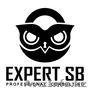 «EXPERT SB»- профессиональный консалтинг в области охраны и безопаснос